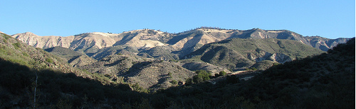 Los Padres National Forest Hike Little Pine Mountain Santa Barbara