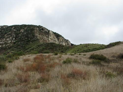 Los Padres National Forest Santa Ynez River Santa Barbara Hike Deer Aliso Canyon Upper Oso Sage Hill