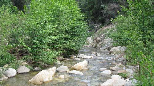 Los Padres National Forest Sespe Wilderness Hike