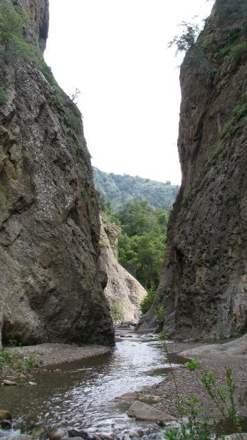 Los Padres National Forest Sespe Wilderness Hike