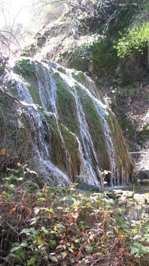 Los Padres National Forest Hike Santa Barbara