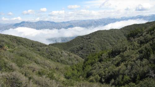 Los Padres National Forest Hike Santa Barbara