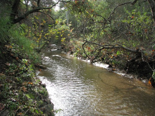 Los Padres National Forest Santa Barbara Day Hike Jesusita Trail San Roque Creek Santa Ynez Mountains