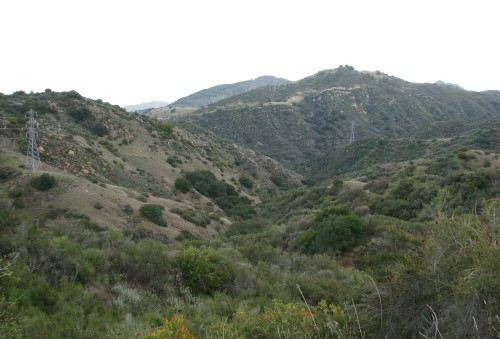 Los Padres National Forest Santa Barbara Day Hike Santa Ynez Mountains Devil's Canyon Trail