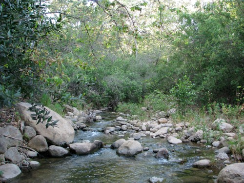 Santa Barbara day hike Santa Ynez Mountains  San Antonio Creek Tucker's Grove