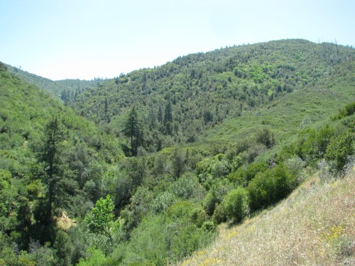 Los Padres National Forest Davy Brown Munch Canyon Zaca Lake Trail Santa Barbara Backcountry