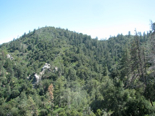 Los Padres National Forest Santa Barbara Backcountry Munch Canyon Trail
