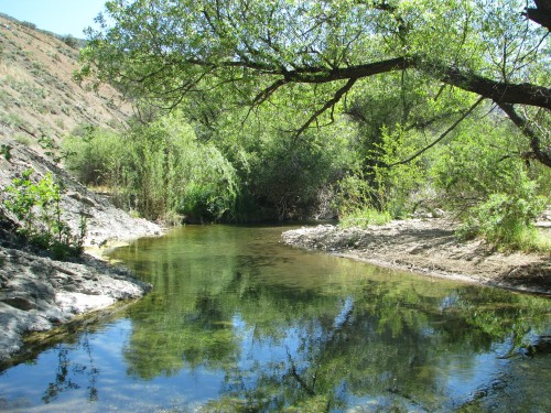 Los Padres National Forest Manzana Creek San Rafael Wilderness Santa Barbara Hike