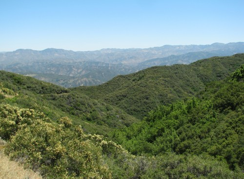 Los Padres National Forest Cold Springs Trail Forbush Flats Santa Ynez Mountains Santa Barbara Hike Backcountry