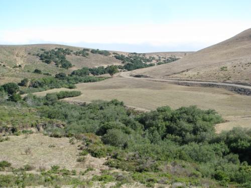 Corralitos Canyon Point Sal Santa Maria Hike