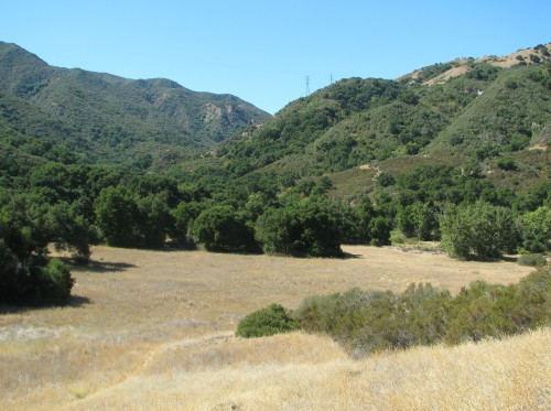Cottam Camp Blue Canyon Trail Santa Ynez Mountains Santa Barbara Backcountry Hike