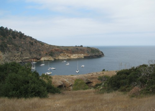 Pelican Bay Santa Cruz Island Channel National Park Hike