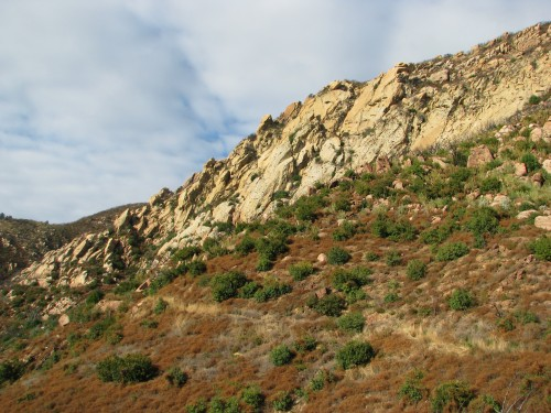Los Padres National Forest Tunnel Trail Santa Barbara Day Hike Santa Ynez Mountains