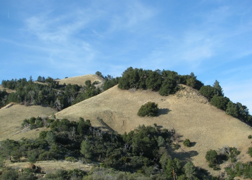 Ranger Peak Los Padres National Forest Figueroa Mountain Road Santa Barbara Hike