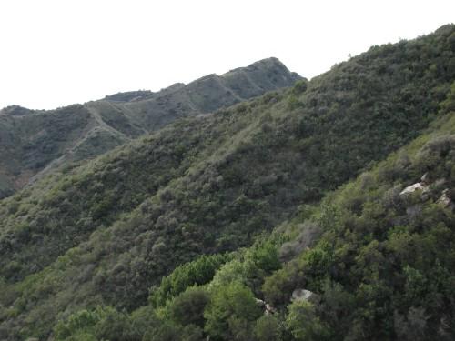 Baron Ranch Trail Santa Barbara Hike Los Padres National Forest