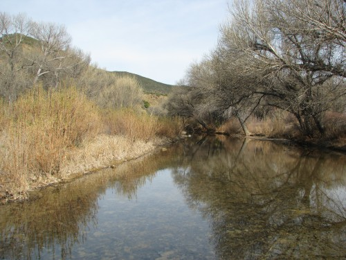 Mono Creek Dick Smith Wilderness Los Padres National Forest Santa Barbara Hike