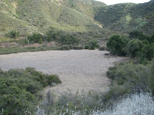 Indian Meadow Camp Dick Smith Wilderness Los Padres National Forest Santa Barbara Backcountry