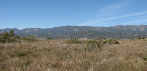 Carpinteria Bluffs Nature Preserve Hike Santa Barbara Trail
