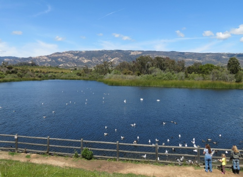 Lake Los Carneros Goleta