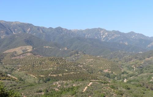 Toro Canyon Park Santa Ynez Mountains Santa Barbara hiking trail