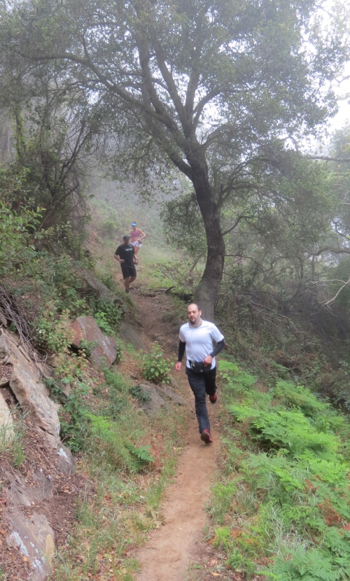 Santa Barbara Trail Runners Ultra Running