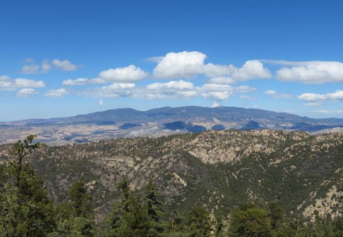 Mount Pinos Los Padres National Forest Santa Barbara Day Hike Trail Ojai Reyes Peak Pine Mountain