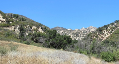 Los Padres National Forest Tin Can Meadow Santa Barbara hike Rattlesnake Canyon Trail