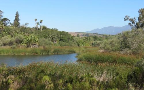 Lake Los Carneros Birding bird watching Roger Millikan Rancho La Patera Park Santa Barbara Goleta day hike trail