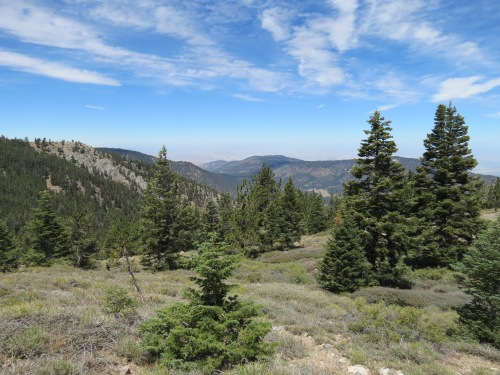 Vincent Tumamait Trail Mount Mt. Pinos Los Padres National Forest Chumash Wilderness