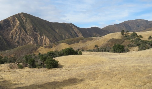 Romo Roma Potrero Santa Cruz Trail Santa Barbara Hike Flores Flat Los Padres National Forest