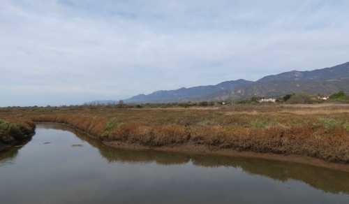 Carpinteria Salt Marsh Nature Park Santa Barbara trail hike Land Trust estuary slough