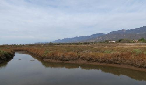 Carpinteria Salt Marsh Nature Park Santa Barbara trail hike Land Trust estuary slough