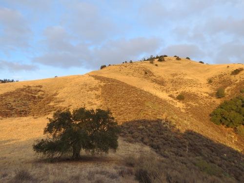 Grass Mountain Midland School Property San Rafael Mountains