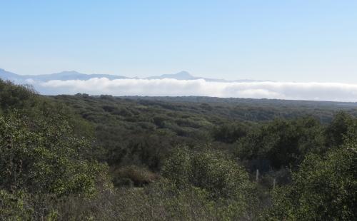 Burton Mesa Ecological Reserve hike trail Lompoc Vandenberg Village