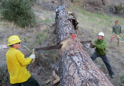 Los Padres Forest Association volunteer trail work national forest manzana creek trail san rafael wilderness backcountry