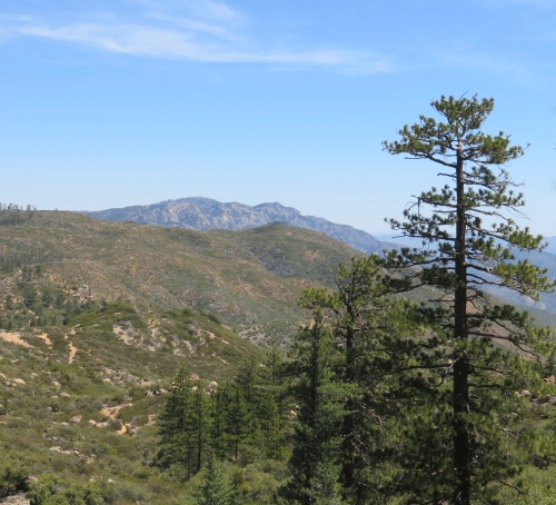 West Big Pine Mountain Mission Pine Trail Spring San Rafael Wilderness hike Los Padres National Forest