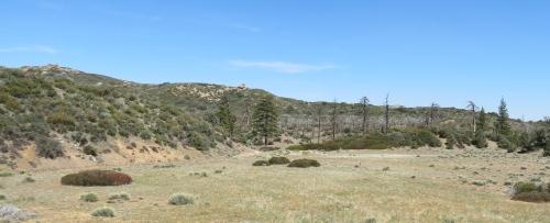 Mission Pine Basin Trail Los Padres National Forest Santa Barbara hike San Rafael Wilderness