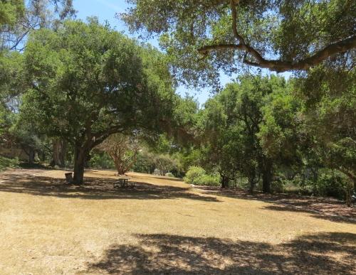 Orpet Park Riviera Santa Barbara hike