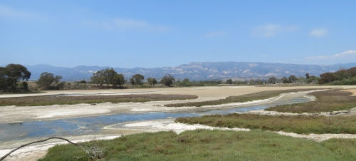 Devereux Slough Coal Oil Point Reserve Santa Barbara Goleta Isla Vista Hiking Trail