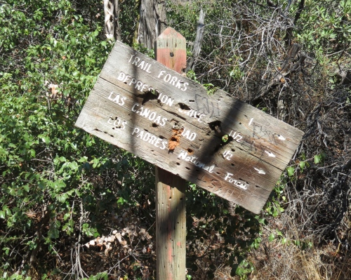 Depression Drive Los Padres National Forest Santa Barbara hike Jesusita Tunnel Trail
