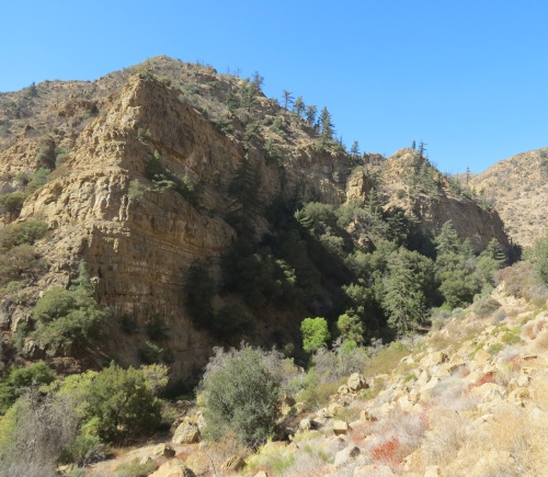 Rancho Nuevo Canyon Trail Dick Smith Wilderness Los Padres National Forest