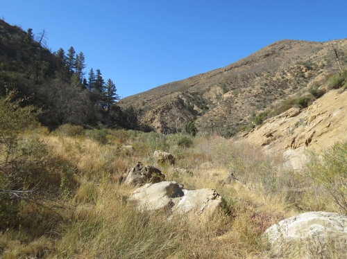 Deal Junction Rancho Nuevo Trail Los Padres National Forest hike Dick Smith Wilderness
