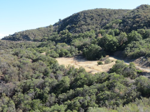 Hidden Potrero Buckhorn Camuesa Road hike trail Santa Barbra Los Padres national forest