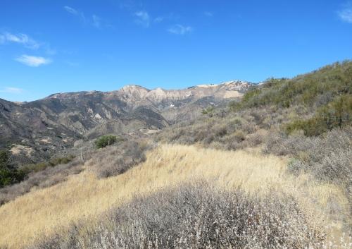 Oso Canyon Nineteen Oaks Buckhorn Camuesa Road Hidden Potrero Los Padres National Forest Santa Barbara hike trail