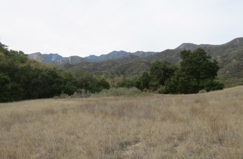 El Nido Meadow Ventura River Preserve hike trail Ojai Valley Land Trust