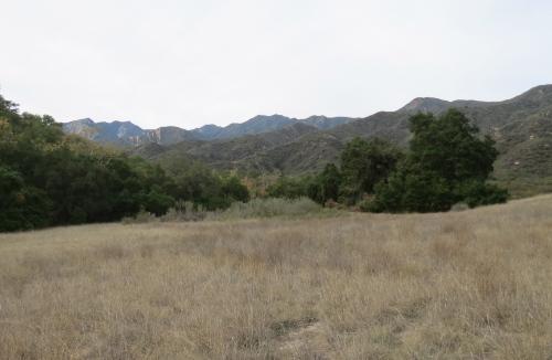 El Nido Meadow Ventura River Preserve hike trail Ojai Valley Land Trust