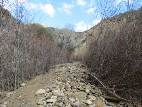 Potrero John Creek Falls hike trail Los Padres National Forest Sespe Wilderness