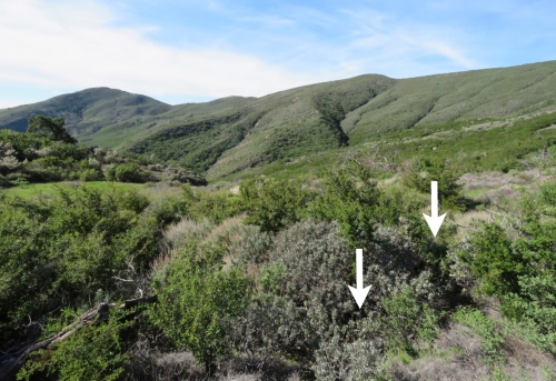 Squat camp adobe trail hike Los Padres national Forest Gaviota Peak