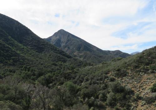 Camuesa Peak Los Padres National Forest
