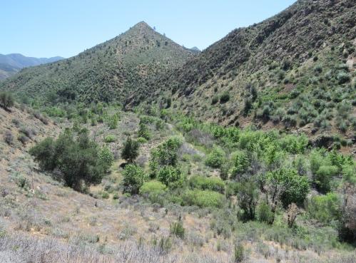 Fish Creek Manzana Trail San Rafael Wilderness hiking backpacking Los Padres National Forest